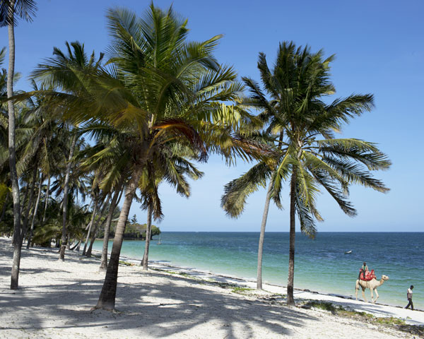 Diani Beach Photo 2
