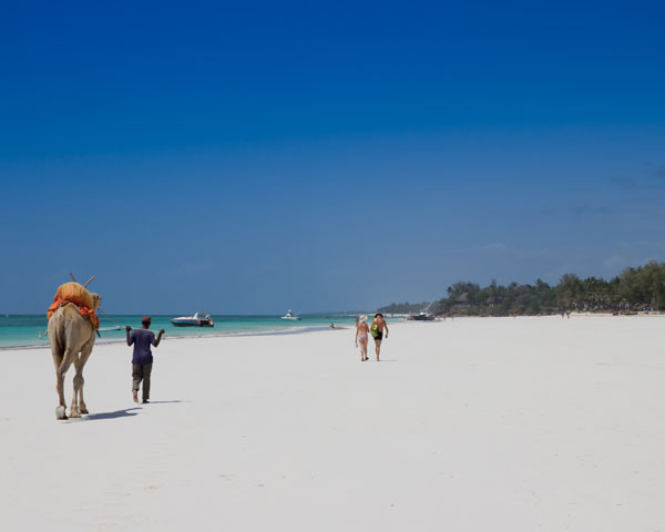 Diani Beach Photo 4