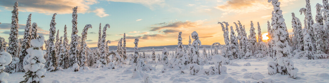 Discover Rovaniemi – Our Destination Of The Week