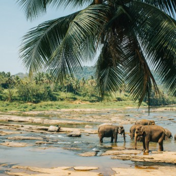 Discover Sri Lanka – Our Destination Of The Week