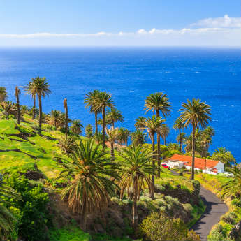 Guided Day Tours In Tenerife